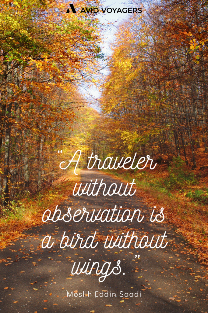 A traveler without observation is a bird without wings. Moslih Eddin Saadi