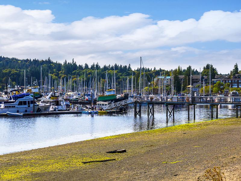 Take a Ferry to Bainbridge Island