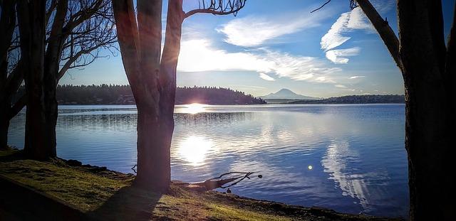 Swim In A Giant Lake