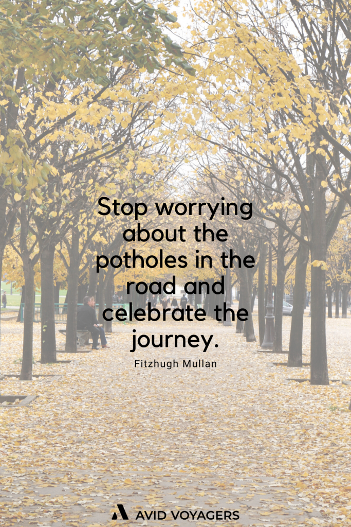 Stop worrying about the potholes in the road and celebrate the journey. Fitzhugh Mullan