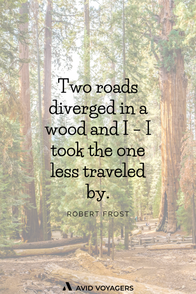 Two roads diverged in a wood and I I took the one less traveled by. Robert Frost