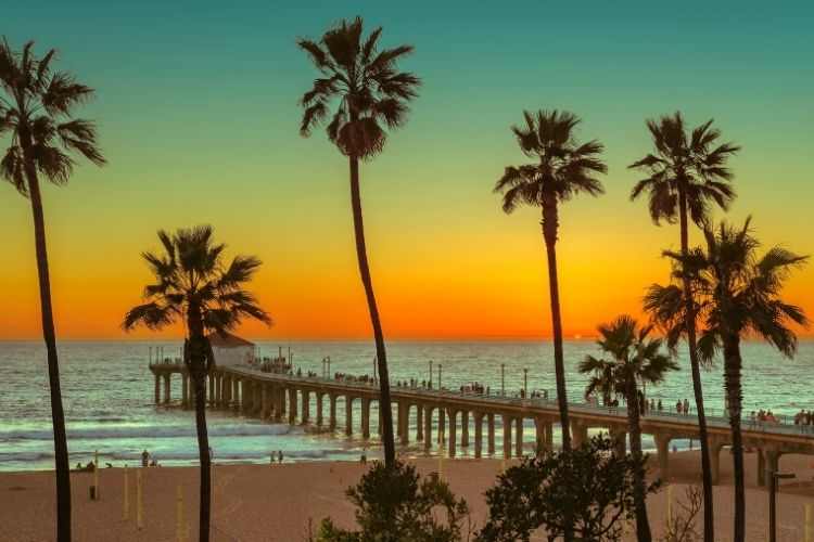 Cruises from Los Angeles: Venice Beach