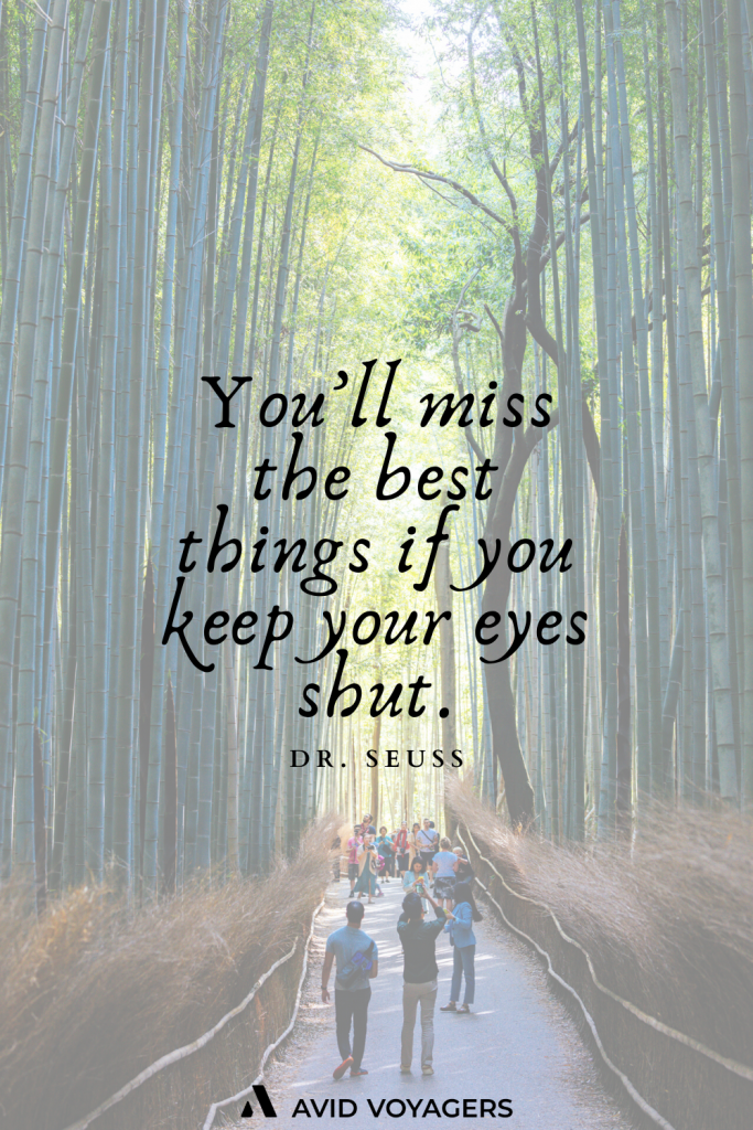 Youll miss the best things if you keep your eyes shut. Dr. Seuss