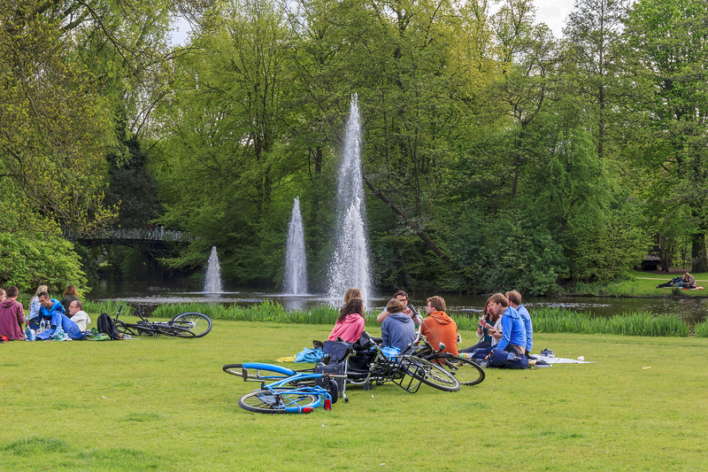 Enjoy and relax with your family picnic in the park